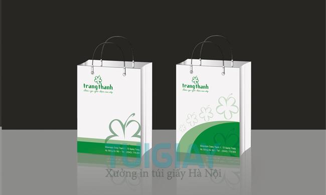 dịch vụ in túi xách giấy chuyên nghiệp
