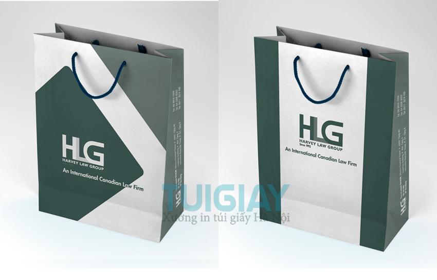 Thiết kế mẫu túi giấy hội nghị sang trọng