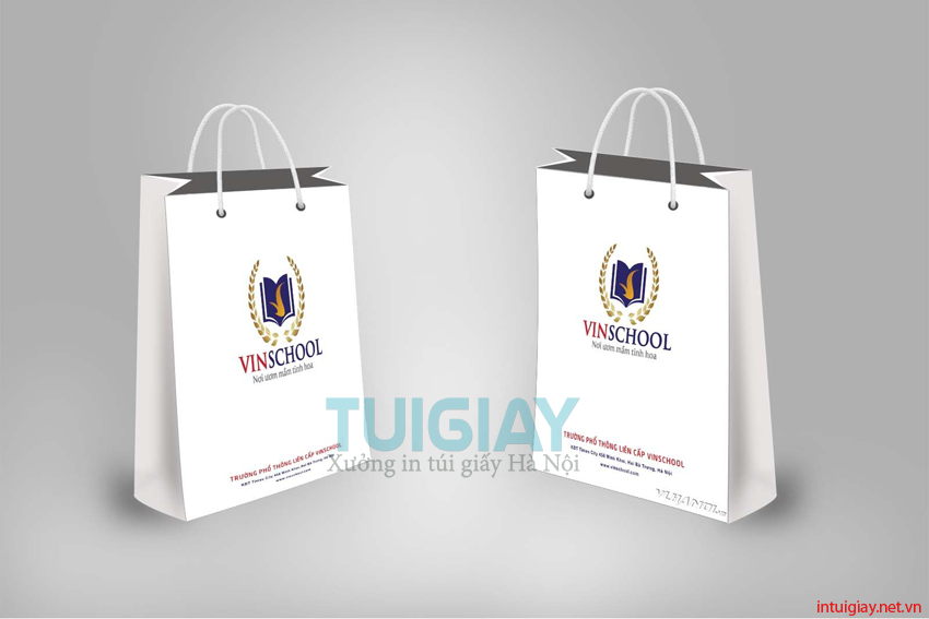 Mẫu thiết kế túi giấy sáng tạo