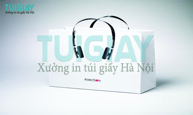 7-mau-in-tui-giay-sang-tao-va-doc-dao-nhat-qua-dat-2