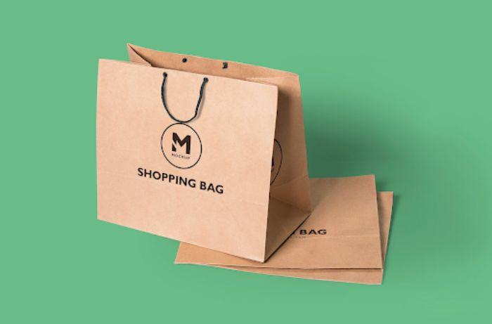 Mẫu túi shopping sang trọng và tiện lợi