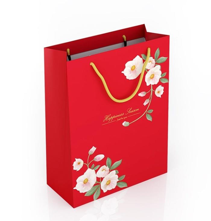 Túi giấy đựng quà tết có kiểu dáng đẹp